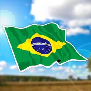 【國旗商品創意館】巴西國旗飄揚抗UV、防水貼紙2入/Brazil/多國款可選購