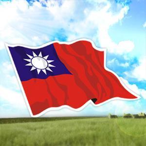 Image result for 國旗