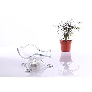 陳信名創意設計-多功能花器-生命-(緊急臨時照明/夜燈)一般包裝