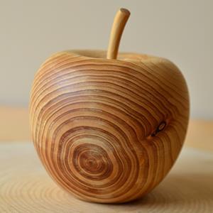 【一郎木創】心持木蘋果