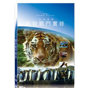 地球脈動13-動物戰鬥實錄 DVD