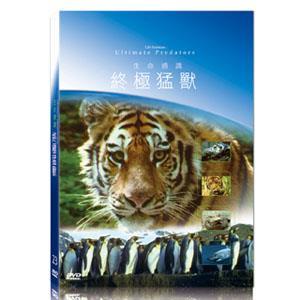 地球脈動23-終極猛獸 DVD