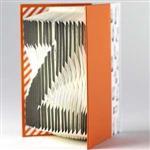賽先生科學工廠-字母摺紙筆記本-橙橘