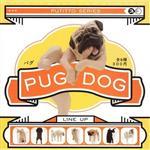 全套八款 脫力巴哥犬 哈巴狗 PUG DOG 扭蛋 轉蛋 擺飾 奇譚 KITAN CLUB
