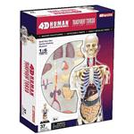 《4D PUZZLE 》人體器官 -  全透視半身人體