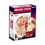 《4D PUZZLE 》人體器官 - 頭頸