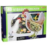 《4D PUZZLE 》透視模型 - 雞