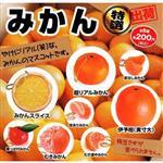 全套8款 特選大柑橘造型吊飾 扭蛋 轉蛋 大柑橘 吊飾 BEAM