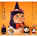 全套4款 貓咪專屬頭巾 P11 第十一彈 萬聖節篇 扭蛋 轉蛋 貓咪 頭巾 奇譚