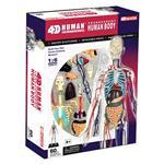 《4D PUZZLE 》人體器官 - 全透視人體 - 高34公分
