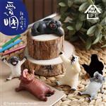 小全套5款 Animal Life 愛睏 盒玩 盒抽系列 擺飾 研達 Toy Friend