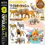 全套5款 真世界動物誌 P1 非洲草原篇 扭蛋 轉蛋 第1彈 海洋堂 KAIYODO