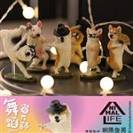盒裝6款 Animal Life 狗舞蹈大師 盒玩 盒抽系列 擺飾 研達 Toy Friend