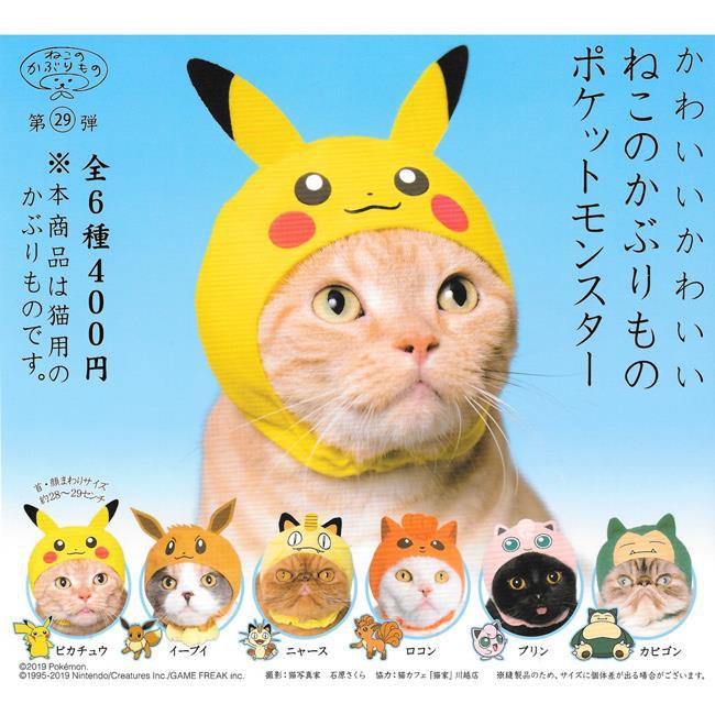 全套6款 貓咪專屬頭巾 P24 精靈寶可夢篇 P1 扭蛋 轉蛋 貓咪頭巾 KITAN 奇譚