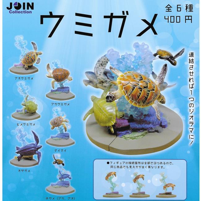 全套6款 JOIN系列 海龜觀賞組 扭蛋 轉蛋 場景組
