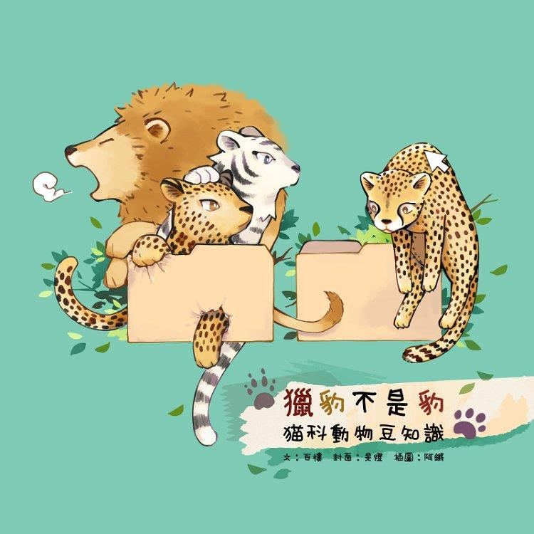 貓科動物豆知識-獵豹不是豹