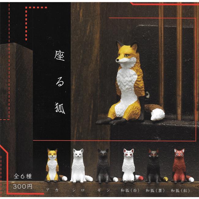 全套6款 坐姿狐 扭蛋 轉蛋 不可思議動物 KITAN 奇譚