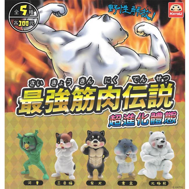 全套5款 最強筋肉傳說 扭蛋 轉蛋 健美動物 肌肉動物 夥伴玩具