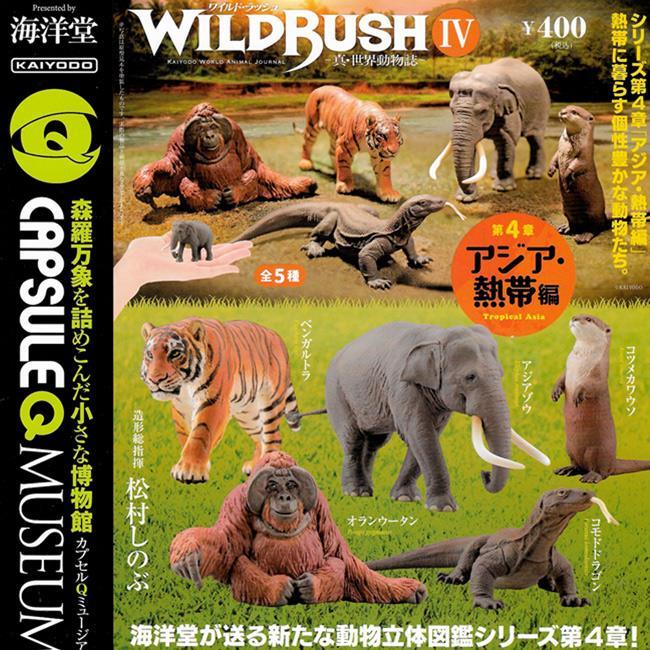 全套5款 真世界動物誌 P4 亞熱帶篇 扭蛋 轉蛋 動物模型 海洋堂 KAIYODO
