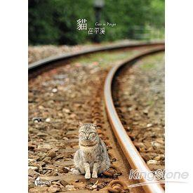 貓在平溪(2)-單張明信片