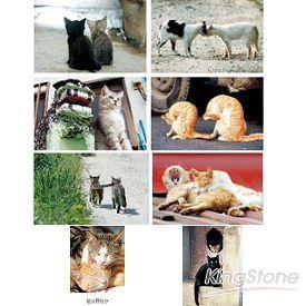 貓咪兩相好-8張明信片