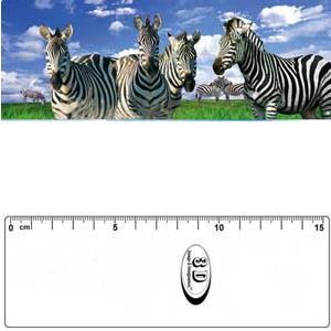 3D書籤尺-斑馬&黑白馬