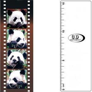 3D書籤尺-貓熊愛拍照