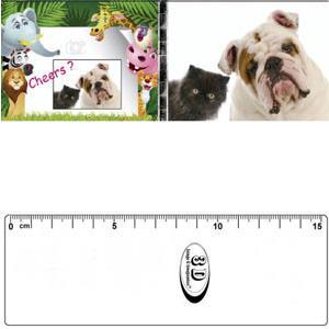 3D書籤尺-貓狗最佳拍檔