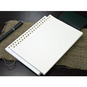 大包裝!介紙1.0(鋼筆適用紙) / 方格內頁補充包特惠組 / A5活頁紙20孔 / 10包組