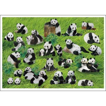 《HACHOO》貓熊樂園