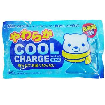 【日本紀陽】進口保冷劑-袋裝-400g-6包入