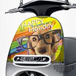 GOGORO面板貼 《潮酷文創》創意保護貼 獨特車貼 車膜 / GR068-繽紛派對