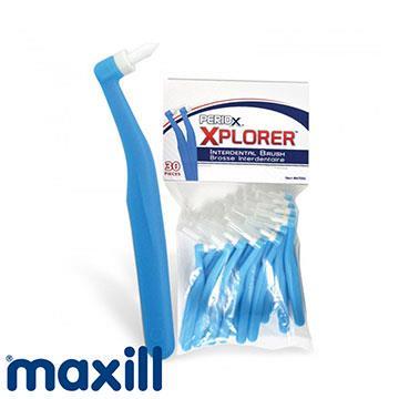 【加拿大美適Maxill】單束毛牙間刷/牙刷(30入)