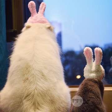 【摩達客寵物】超萌秒變兔兔耳造型寵物帽/貓咪狗狗頭套(粉紅色系)手工縫製