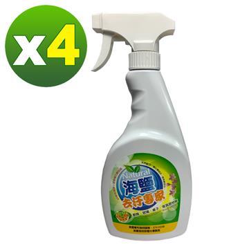 【環寶靈】海鹽去汙專家500ml(4瓶/組)