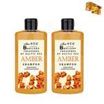 維髮健 BELLARO琥珀能量護髮洗髮精華500ml*2