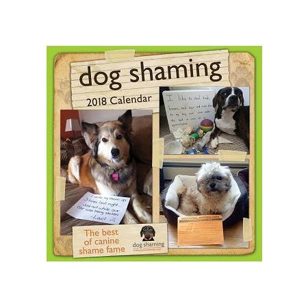 Dog Shaming 2018 Calendar(Wall)