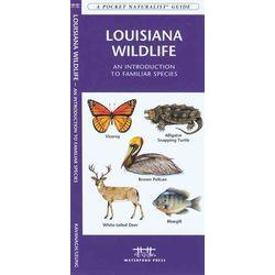 Louisiana Wildlife
