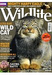 BBC Wildlife Vol.36 No.1 1月號 2018
