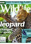 BBC Wildlife Vol.37 No.8 7月號 2019