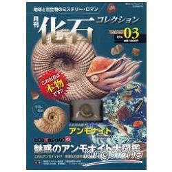 月刊化石收集  Vol.3 菊石