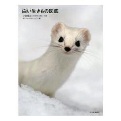 白色生物圖鑑