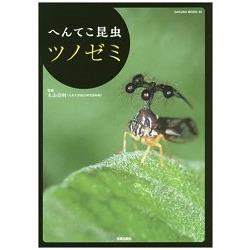 奇妙昆蟲角蟬