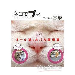 超級明星貓咪趣味寫真大集合Vol.1