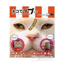 超級明星貓咪趣味寫真大集合Vol.2