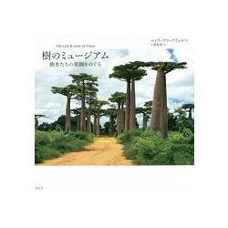 樹之博物館-環繞樹木的樂園