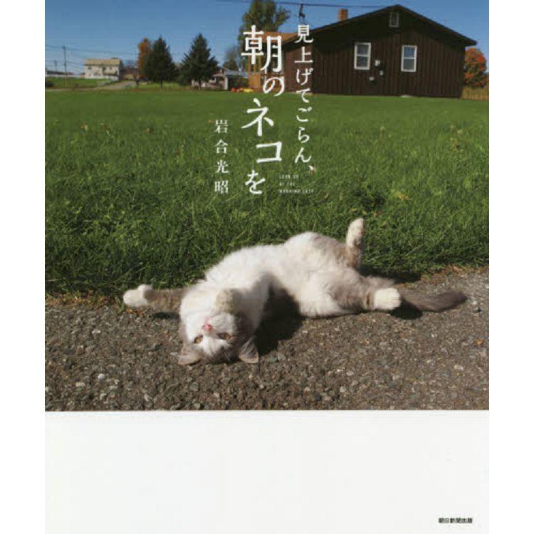 岩合光昭攝影集-看看早上的貓咪