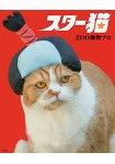 巨星貓咪-貓咪寫真集附明信片