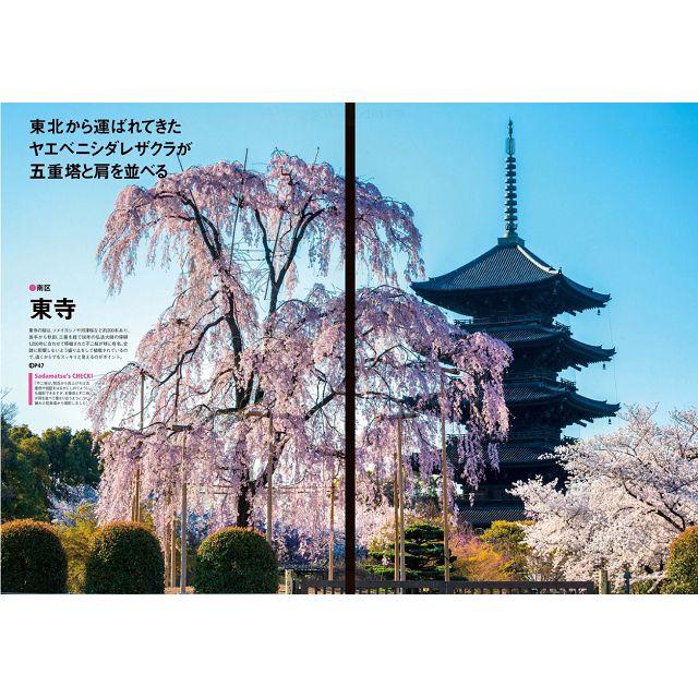 京都Walker 2019年春季號