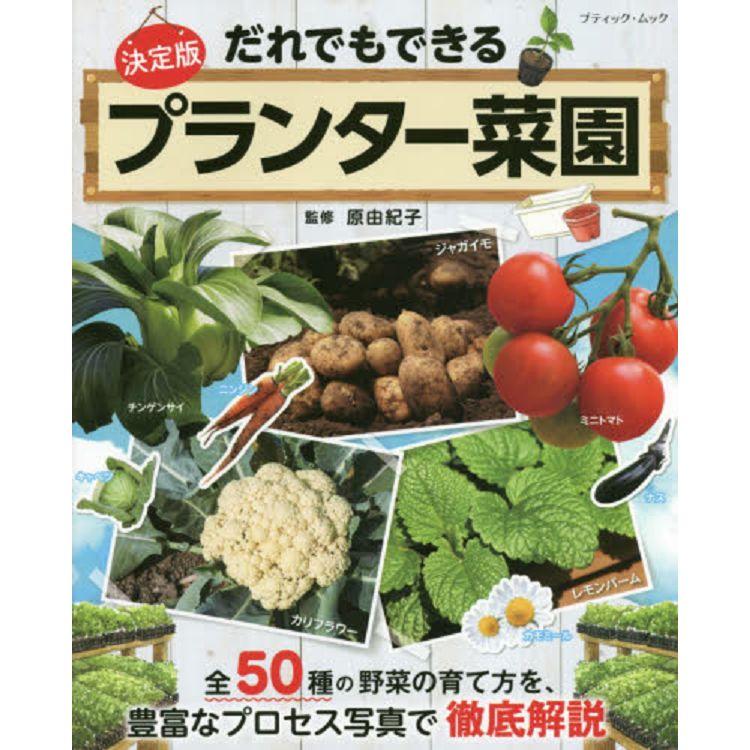 任何地方都可培育的手栽蔬菜